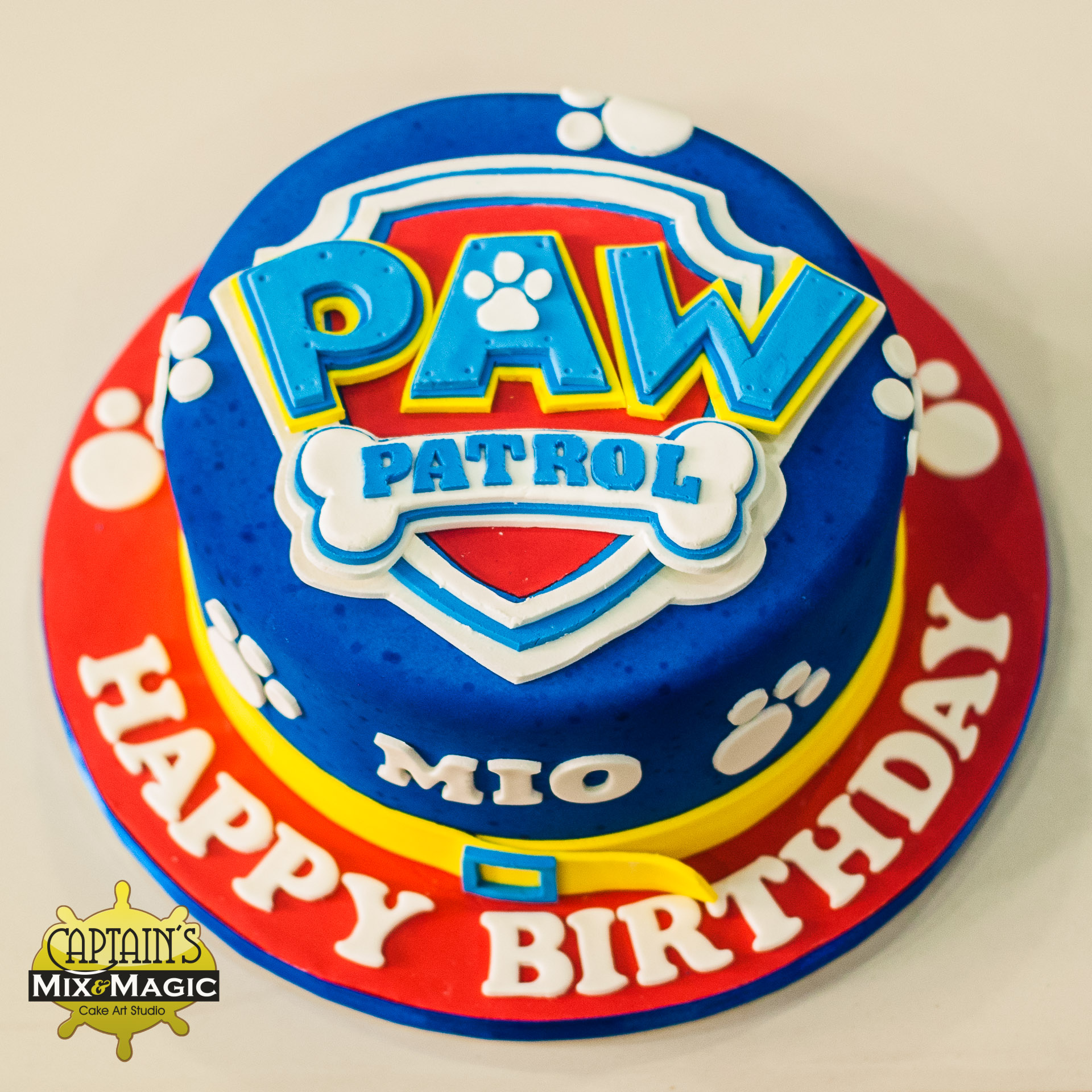 paw patrol magic (1 of 2)